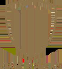 Black River FC logo